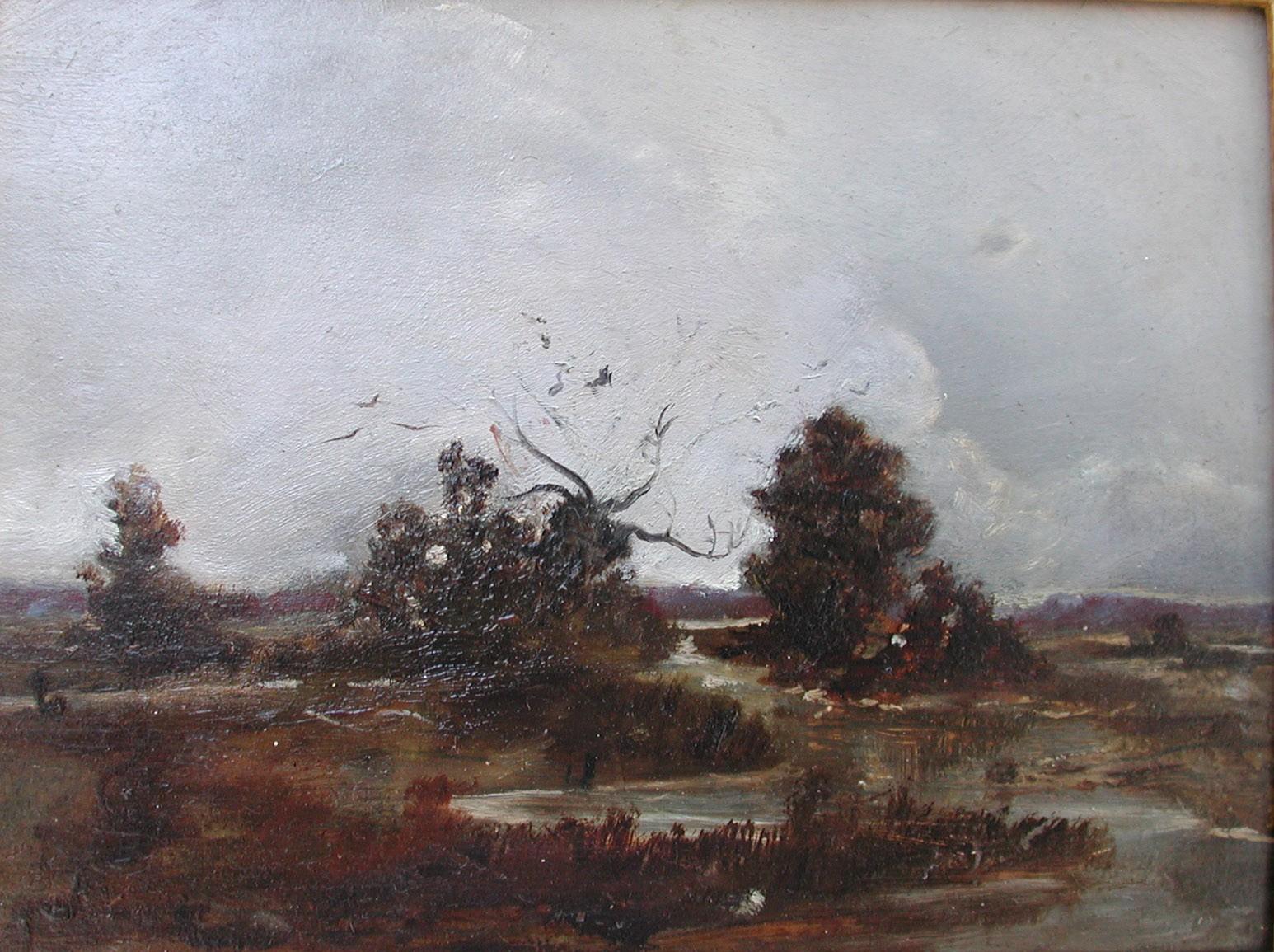 Bobies Moorlandschaft